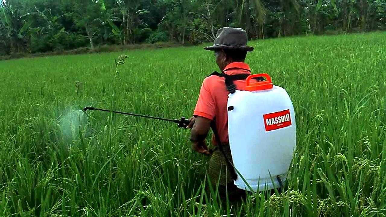 Memelihara Media Semprot Pertanian Sprayer Sumber Plastik