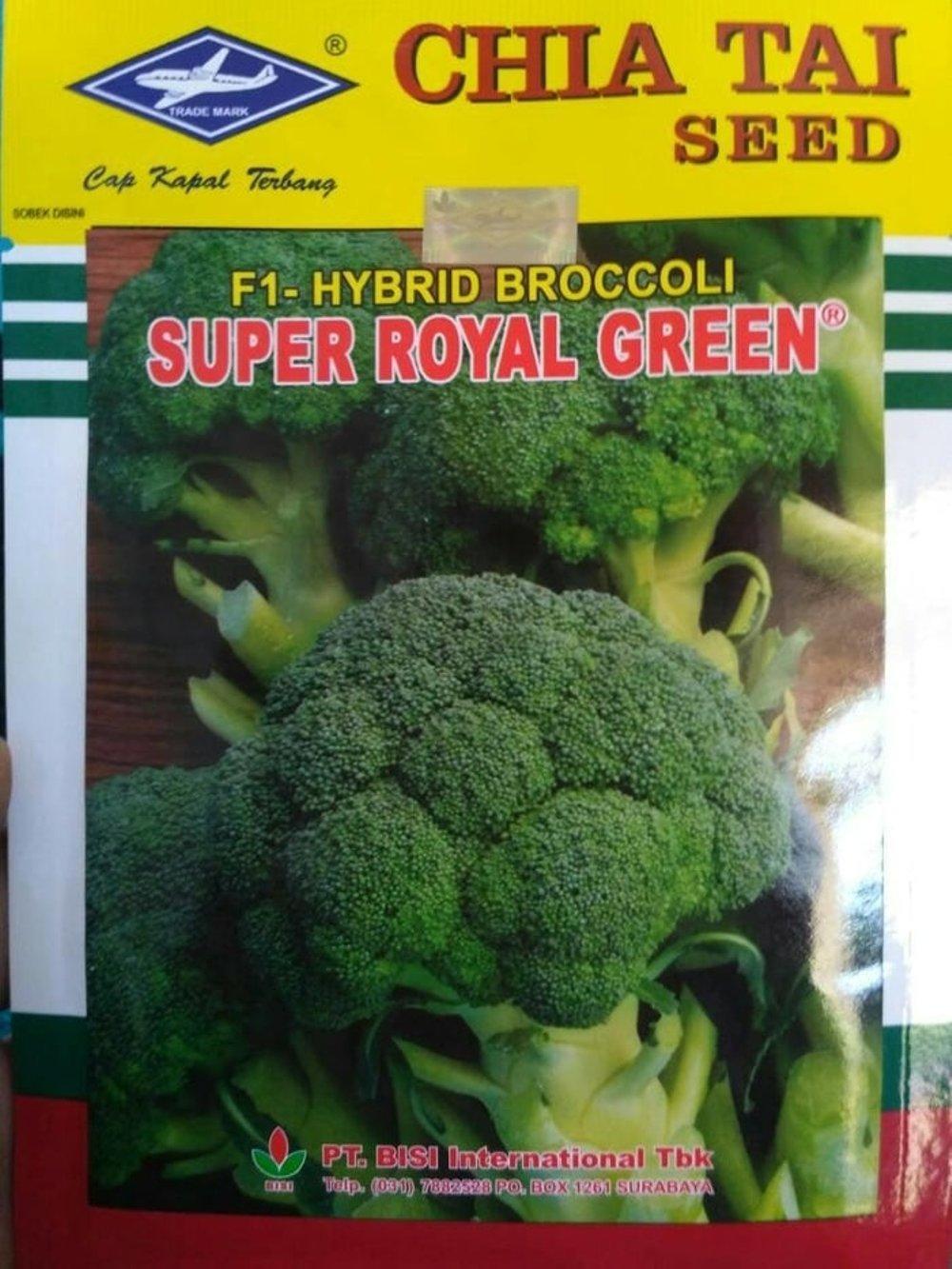 6 Metode Menanam Brokoli Dengan System Hidroponik Rockwoll Sumber Plastik