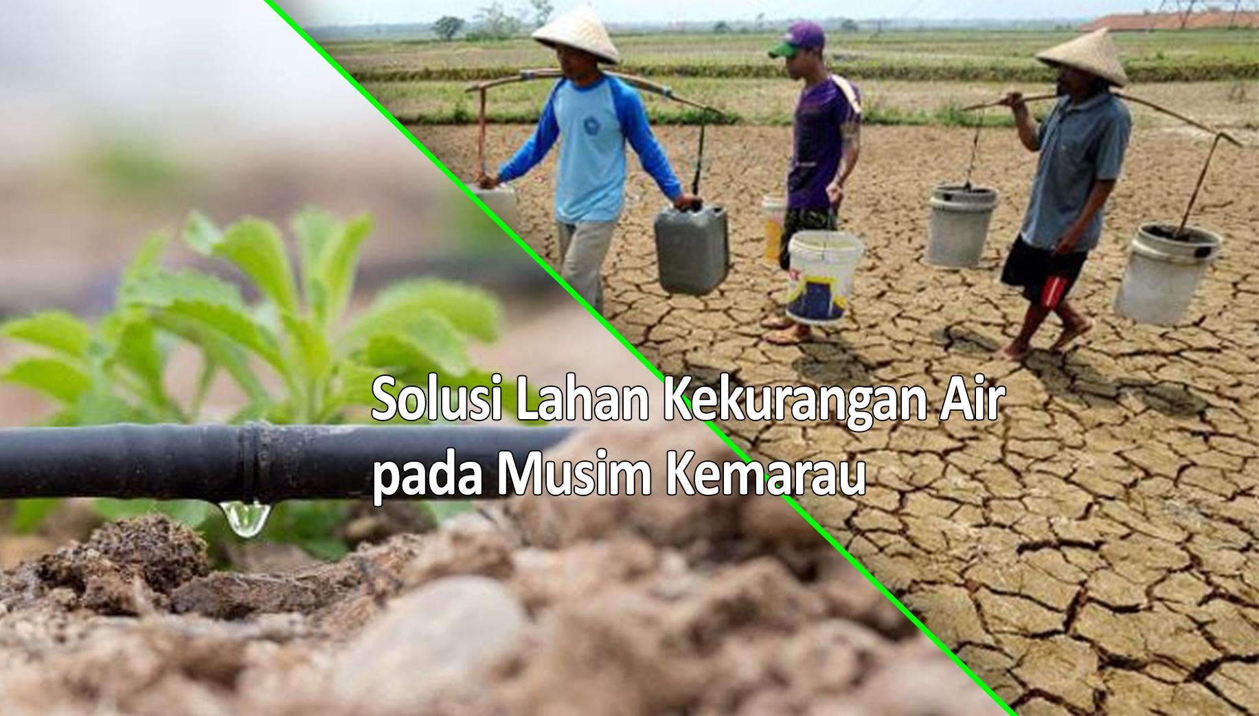 Solusi Kekurangan Air pada Musim Kemarau